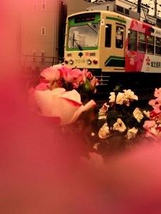 20121201-220140.jpg